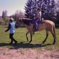 2012-05-08-134702-ponny-skolicka-10